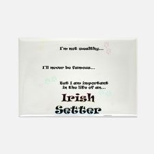 Irish Setter Life Rectangle Magnet (10 pack)
