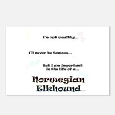 Elkhound Life Postcards (Package of 8)