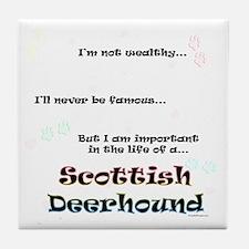 Deerhound Life Tile Coaster