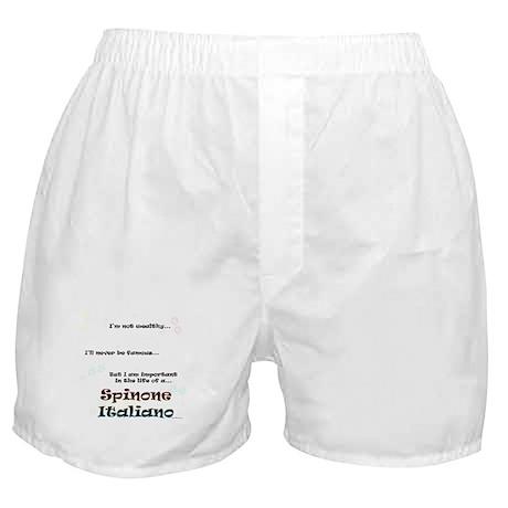 Spinone Life Boxer Shorts