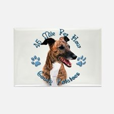 Brindle Couch Rectangle Magnet