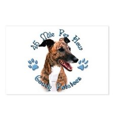 Brindle Couch Postcards (Package of 8)