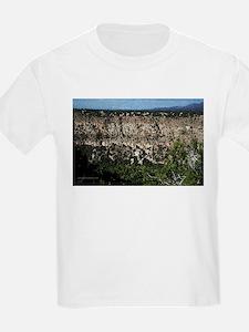 New Mexico Canyon T-Shirt