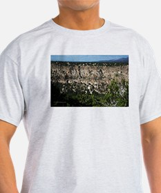 New Mexico Canyon T-Shirt