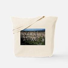 New Mexico Canyon Tote Bag