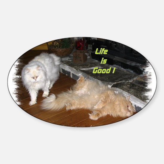 Life is Good - Persian Cats Oval Decal