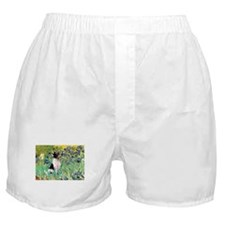 Irises & Toy Fox Terrier Boxer Shorts