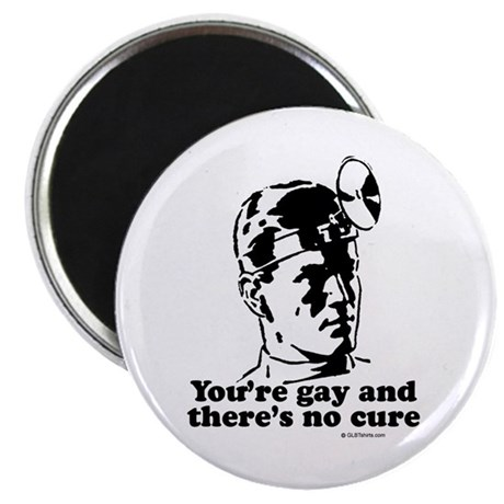 """You're gay and there's no cure 2.25"""" Magnet (10 pa"""