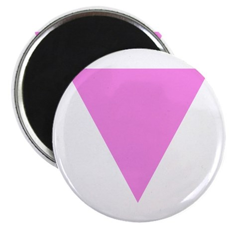 "Pink Triangle 2.25"" Magnet (10 pack)"