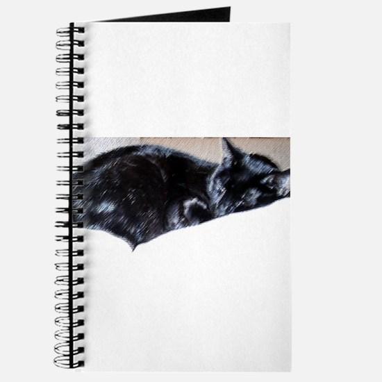 Midnight Sleeping Journal
