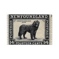 Newfoundland Stamp Rectangle Magnet