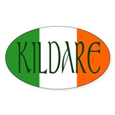 County Kildare Oval Decal
