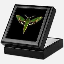 Chiron Sphinx Moth Keepsake Box