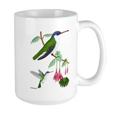 MugViolet-crowned Hummingbird