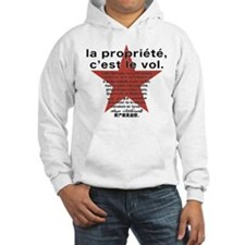 2-sided Property is Theft Hoodie