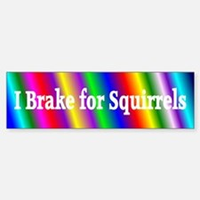 I Brake for Squirrels 5 Bumper Bumper Bumper Sticker