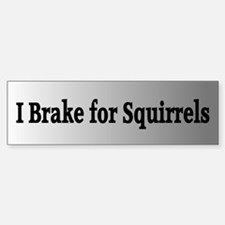 I Brake for Squirrels 3 Bumper Bumper Bumper Sticker