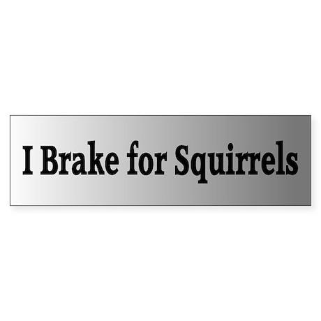 I Brake for Squirrels 3 Bumper Sticker