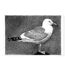 seagull Postcards (Package of 8)