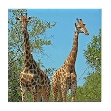 Pair of Giraffes Tile Coaster