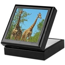 Pair of Giraffes Keepsake Box