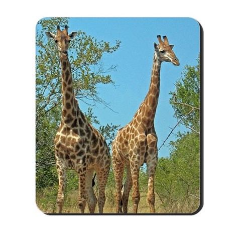 Pair of Giraffes Mousepad