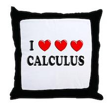Calculus Throw Pillow