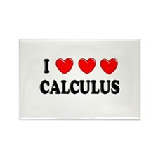 Calculus Rectangle Magnet