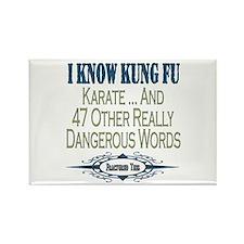 Kung Fu Rectangle Magnet
