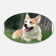 Corgi Oval Decal