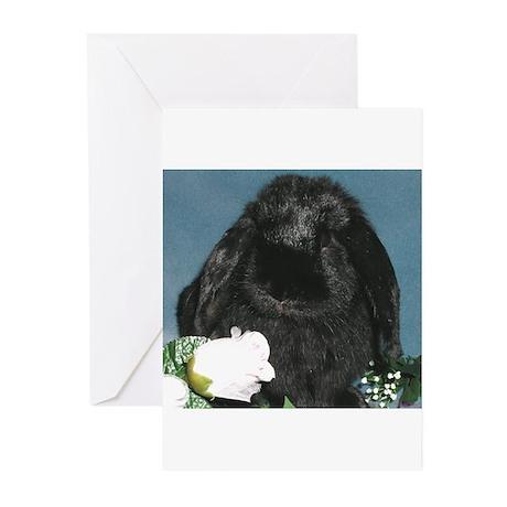 Black Velvet Greeting Cards (Pk of 10)