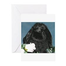 Black Velvet Greeting Cards (Pk of 20)