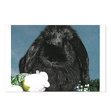 Black Velvet Postcards (Package of 8)