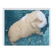 Guinea Pig Wall Calendar (1)