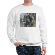 Unique Bully pitbulls Sweatshirt