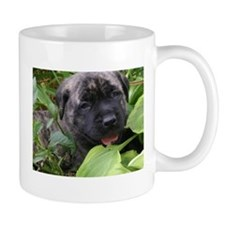 Unique Brindle mastiff Mug