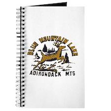 Blue Mountain Adirondacks Journal