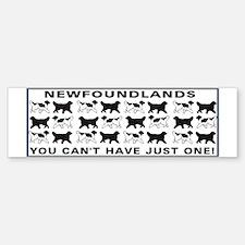 Newfoundland Bumper Bumper Bumper Sticker