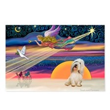 XmasStar/PBGV (#2) Postcards (Package of 8)