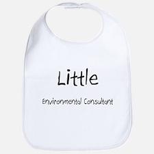 Little Environmental Consultant Bib