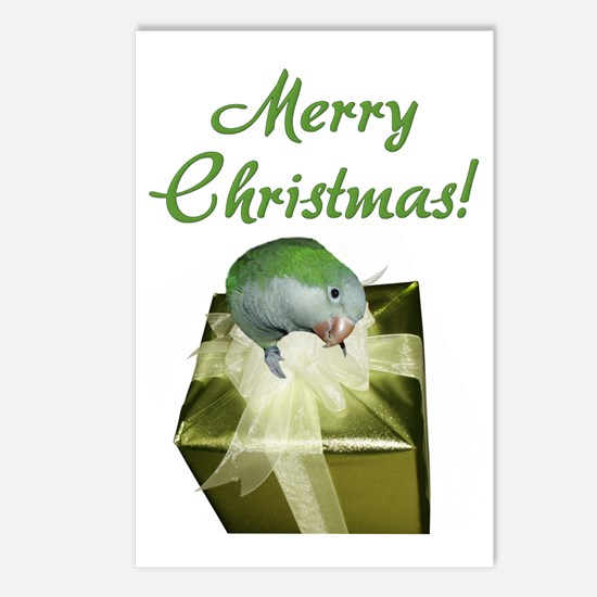 Quaker Parrot Merry Christmas Postcards (8 pack)