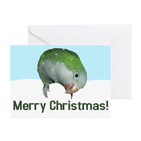 Quaker Parrot Merry Christmas Cards (Pk of 10)