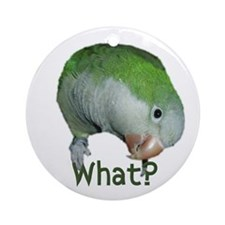 "Quaker Parrot ""What?"" Ornament (Round)"