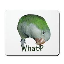 """Quaker Parrot """"What?"""" Mousepad"""