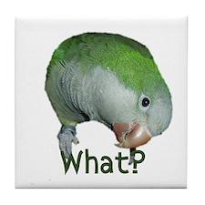 """Quaker Parrot """"What?"""" Tile Coaster"""