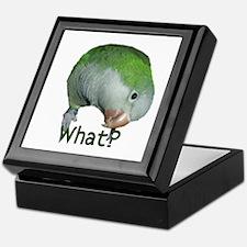 "Quaker Parrot ""What?"" Keepsake Box"