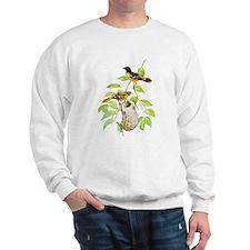 Baltimore Oriole Bird Sweatshirt