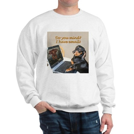 Lilys Computer Sweatshirt