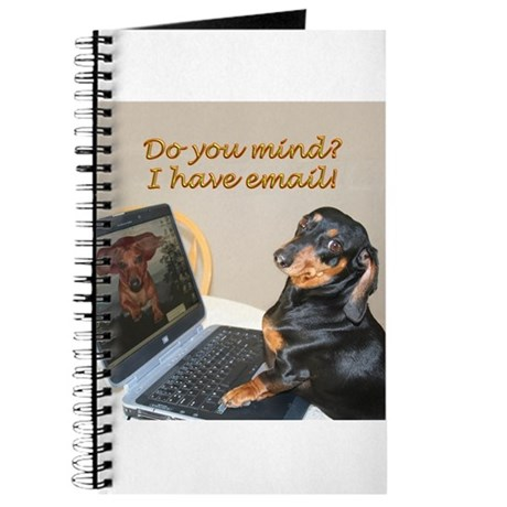 Lilys Computer Journal