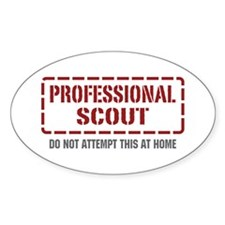 Professional Scout Oval Decal